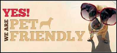 pet_friendly2_655