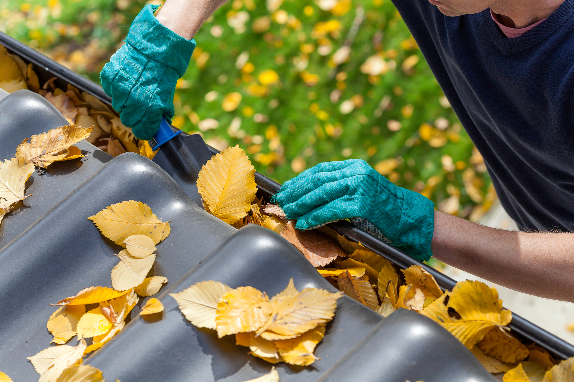 cleaning leaves out of the gutter